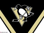 Pittsburgh Penguins - Thanks to Holly!
